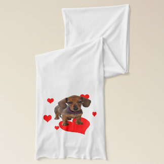 Love (Hearts) Dachsies Scarf