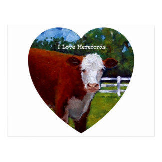 Love Herefords: Original Oil Painting, Cows Postcard