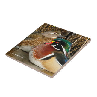Love in the Reeds: A Pair of Wood Ducks Gets Cozy Tile