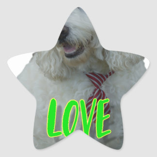 Love is a four legged word star sticker