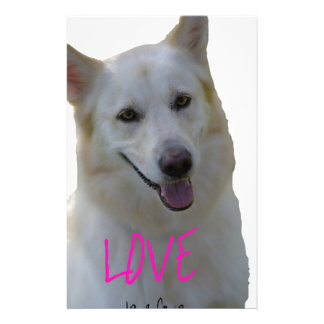 Love is a four legged word stationery