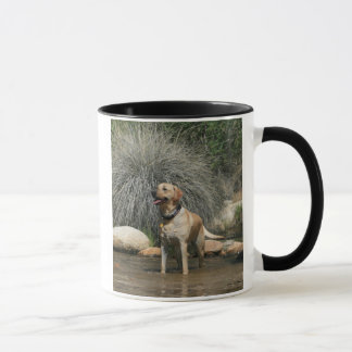 Love is being owned by a Yellow Lab Mug