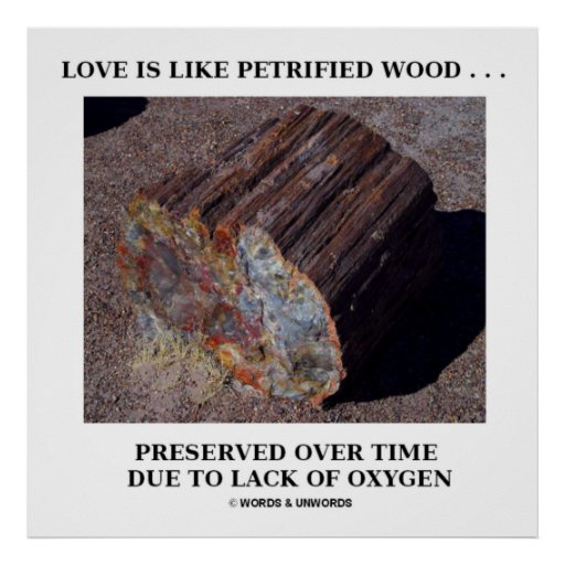 Love Is Like Petrified Wood ...Preserved Over Time Posters