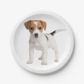 Love Jack Russel Terrier Puppy Dog Paper Plates