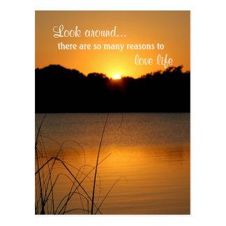 Love Life Appreciate Inspiration Motivation Quote Postcard