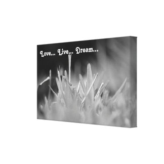 Love Live Dream Canvas Print