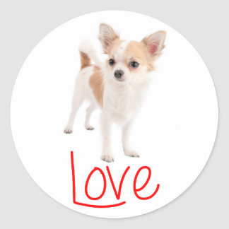 Love Long Haired Chihuahua Puppy Dog Round Sticker
