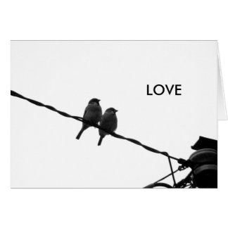 Love/Looking in the Same Direction Card