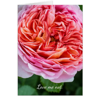 Love me not.  The break-up card. Card