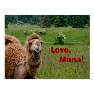 Love, Mona postcard