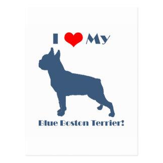 Love My Blue Boston Terrier Postcard