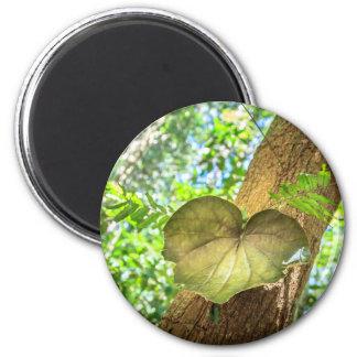 Love Nature Leaf 2 Inch Round Magnet