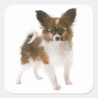 Love Papillon Puppy Dog Hello, Miss You Square Sticker