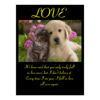 LOVE Posters Animal 1