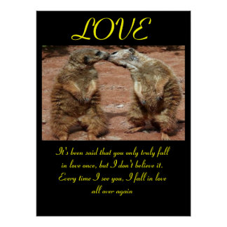 LOVE Posters Animal 2