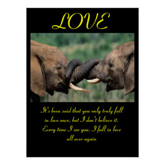 LOVE Posters Animal 6