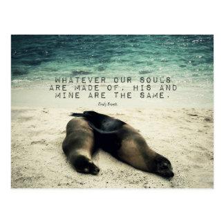 Love romantic couple quote beach Emily Bronte Postcard
