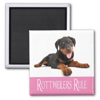 Love Rottweiler Puppy Dog Square Magnet