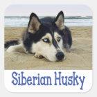 Love Siberian Husky Puppy Dog Greeting Stickers