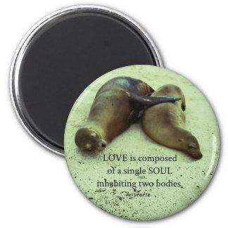 Love soulmates Aristotle quote Magnet