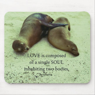 Love soulmates Aristotle quote Mouse Pad