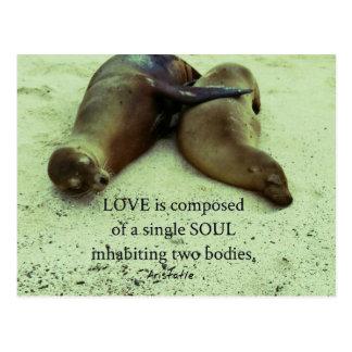 Love soulmates Aristotle quote Postcard