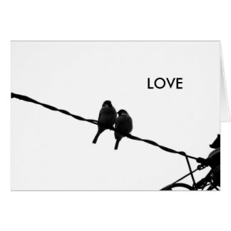 Love/Sparrow Pair B&W Photo Card