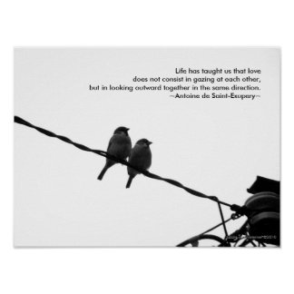 Love - Sparrow Pair B&W Photo Love Quote Print