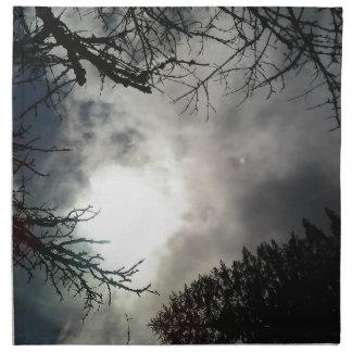 Love the sky napkin