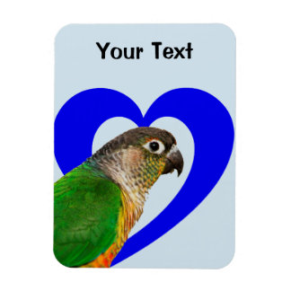 Love this Conure Magnet