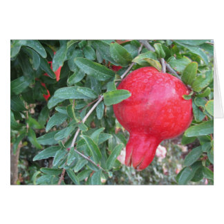 Love to You Greeting with Pomegranate Card