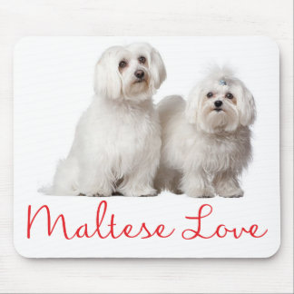 Love White Maltese Puppy Dog Mouse Pad
