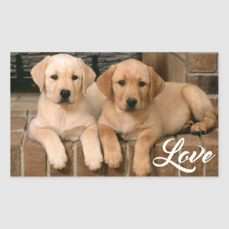 Love Yellow Labrador Retriever Puppies Sticker