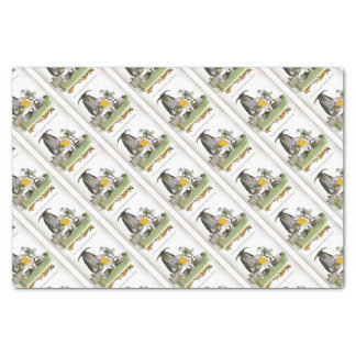 love yorkshire falconry display tissue paper