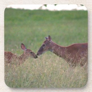 Love you deer coaster