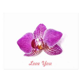 Love You, Lilac phalaenopsis floral watercolor art Postcard