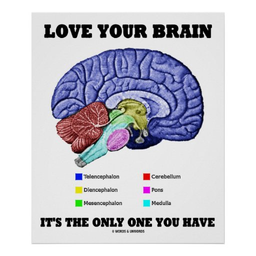 Love Your Brain It's The Only One You Have (Humor) Posters