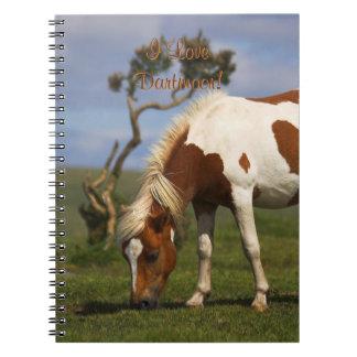 Loveable Wild Pony on Dartmoor Notebooks