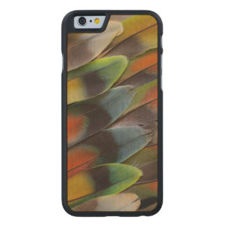 Lovebird Feather Pattern Carved Maple iPhone 6 Case