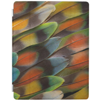 Lovebird Feather Pattern iPad Cover