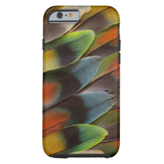 Lovebird Feather Pattern Tough iPhone 6 Case
