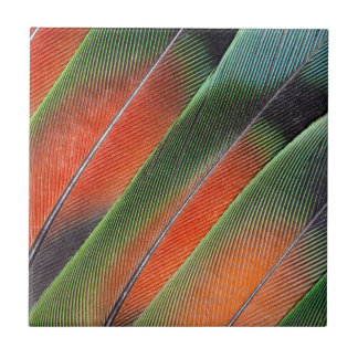 Lovebird Tail Feather Design Tile
