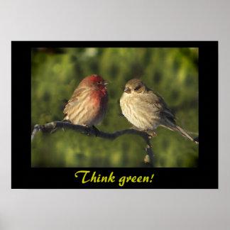 Lovebirds Think Green Poster
