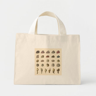 Lovely Barnacle Tote Bag