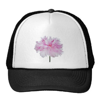 Lovely Bright clignote Peony Flower Photo Casquette