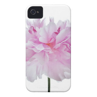 Lovely Bright wink Peony Flower Photo iPhone 4 Case