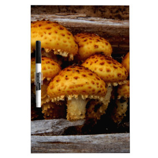 Lovely Bunch of Wild Mushrooms Dry Erase Board