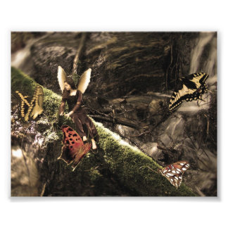 Lovely Butterfly Nature Fairy Photo Print