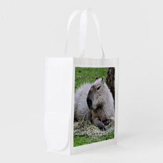 Lovely capybara reusable grocery bags