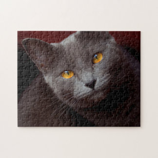 Lovely Chartreux jigsaw puzzle